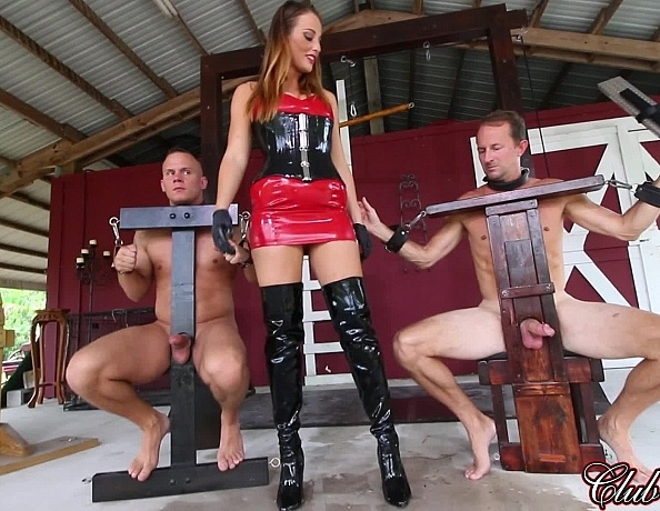 Consider, domination female mail remarkable, very